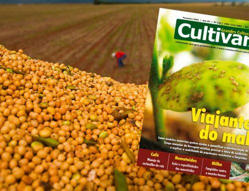 A importância da pesquisa para a agricultura brasileira – Revista Cultivar – Janeiro de 2020