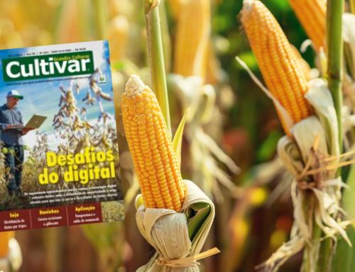 Inoculantes: a vez do milho Revista Cultivar – Março de 2020