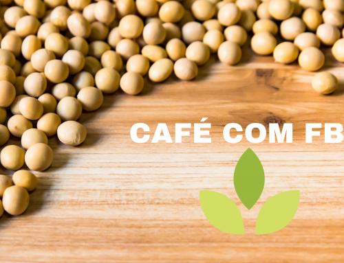 Café com FBN – Coinoculação – parte 2