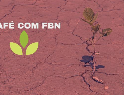 Café com FBN – Semeadura e plantio no pó