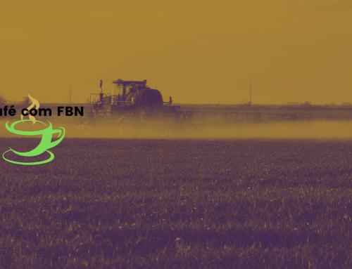 Café com FBN – O uso do nitrogênio na cultura de soja, parte 2