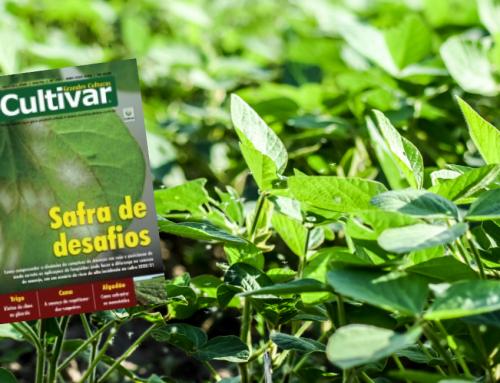 O crescimento no uso da coinoculação – Revista Cultivar – Setembro de 2020