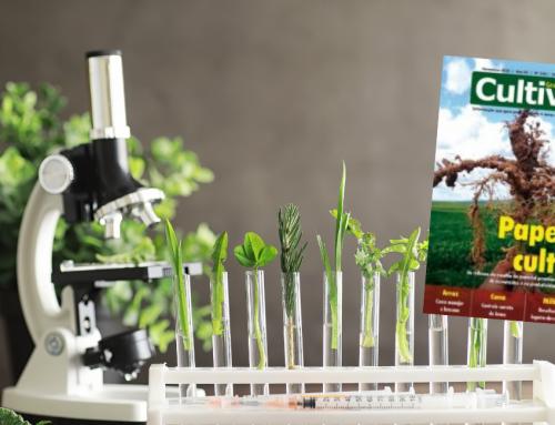 O impacto dos cientistas para a humanidade – Revista Cultivar – Novembro de 2020