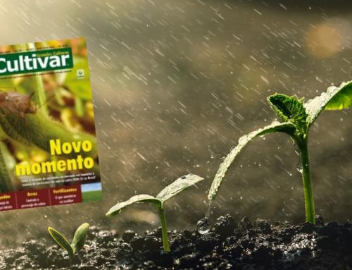 Efeitos do stress hídrico na nodulação da soja – Revista Cultivar – Outubro 2020